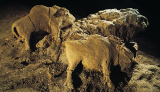 14000 Years Old Bisons Sculpture Found in Le d'Audoubert Cave, Ariege, France