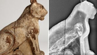 70 Million Mummified Animals in Egypt Expose Ancient Mummy Origin
