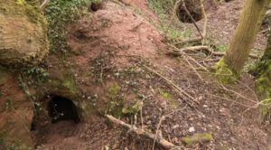 Rabbit hole leads to incredible 700-year-old Knights Templar cave complex