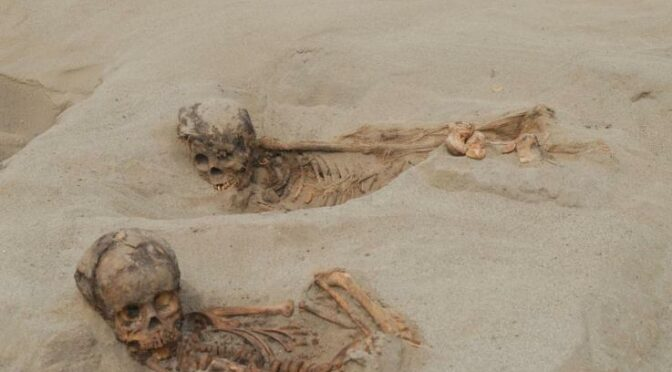 Hundreds of children and llamas sacrificed in a ritual event in 15th century Peru