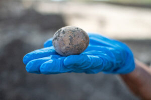 Israeli Archaeologists Find 1,000-Year-Old Intact Chicken Egg